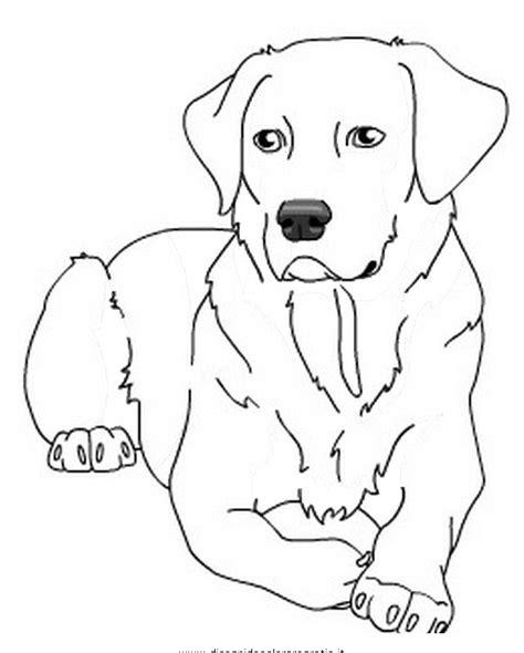 cane labrador adulto disegno da colorare disegni da