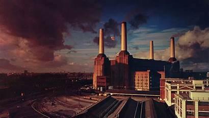 Album Floyd Animals Resolution 1080p 4k Wallpapers