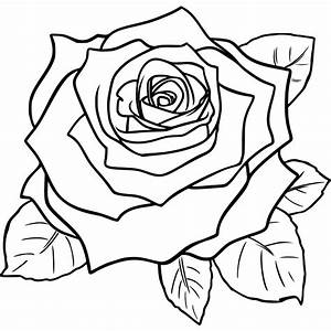 vintage flowers rose by maxim2 - A line drawing of a ...