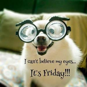 I can't believe my eyes. it's Friday | Picture Quotes