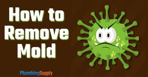 diy   remove mold