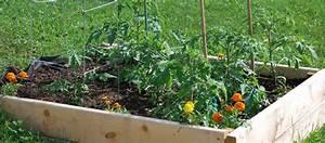 Mini Potager En Bois : fabriquer un mini potager hors sol conseils blog jardin ~ Premium-room.com Idées de Décoration