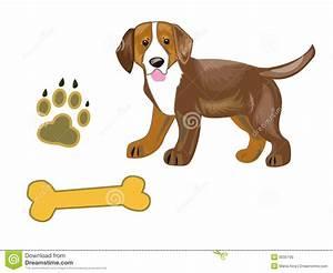 royalty free stock photo dog image
