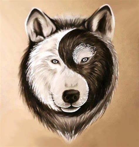 yin  wolf face tattoo design tattoo art yin