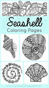 Seashell Coloring Pages 1111