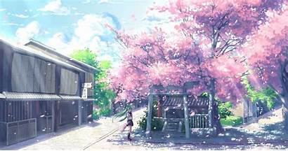Aesthetic Anime Laptop Wallpapers Backgrounds Scenery Cherry