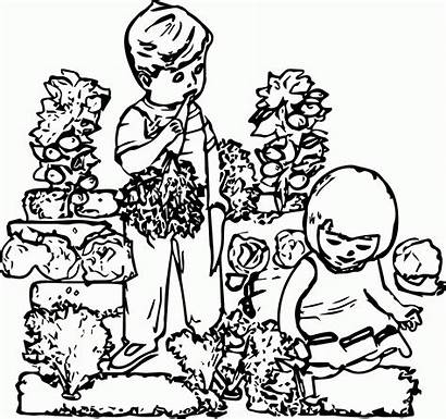 Coloring Garden Drawing Children Gardening Pages Popular