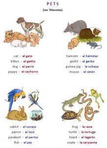 Spanish Farm Animals Worksheet
