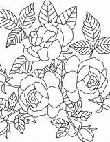 Coloring Teens Parents Mm Printables Carnation Url sketch template