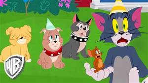 Tom And Jerry Birthday Images Hd - impremedia.net