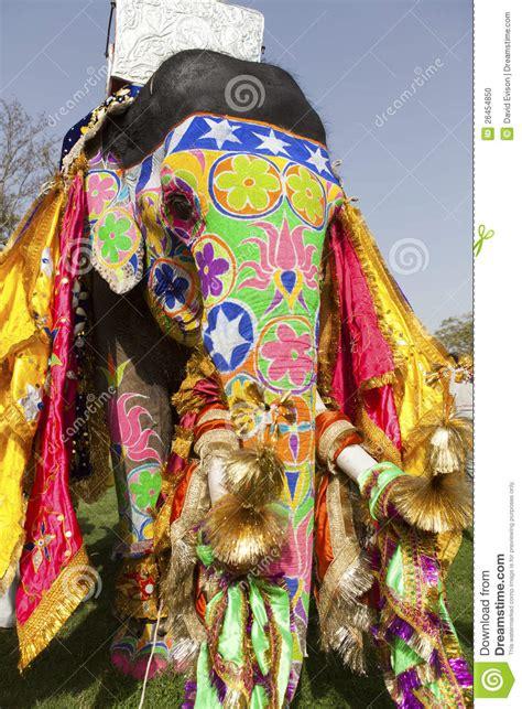 decorated elephant stock photo image  colour