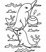 Coloring Dolphin Pages Sea Animals Print sketch template