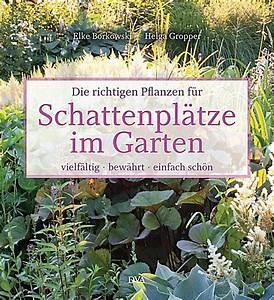 Pflanzen Für Schattengarten : die richtigen pflanzen f r schattenpl tze im garten buch ~ Sanjose-hotels-ca.com Haus und Dekorationen