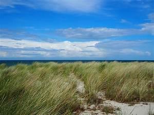 Hostel Ostsee Günstig : surfen an der ostsee wellenreiten kitesurfen und sup in meck pomm ~ Sanjose-hotels-ca.com Haus und Dekorationen