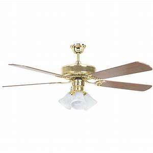 Radionic hi tech tutor in polished brass ceiling fan