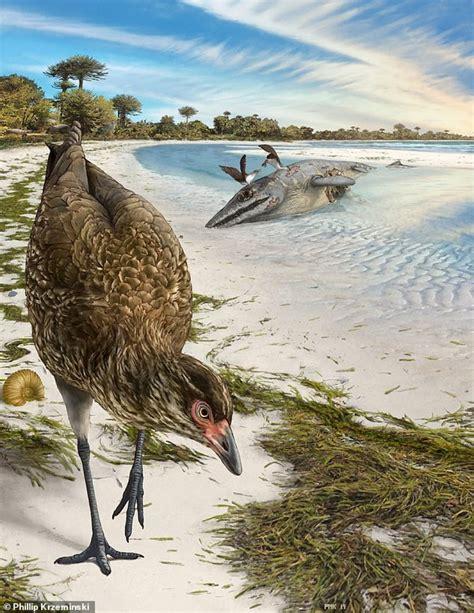 Zbulohet fosili më i vjetër në botë i një zogu ...