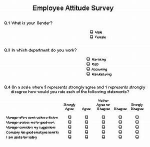 employee surveys are they any good the empty head With attitude survey template