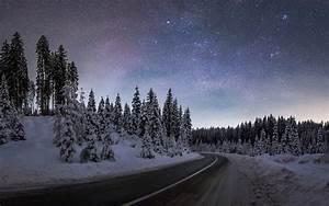 Download, Wallpaper, Winter, Night, At, Pokljuka, Forest, 3840x2400