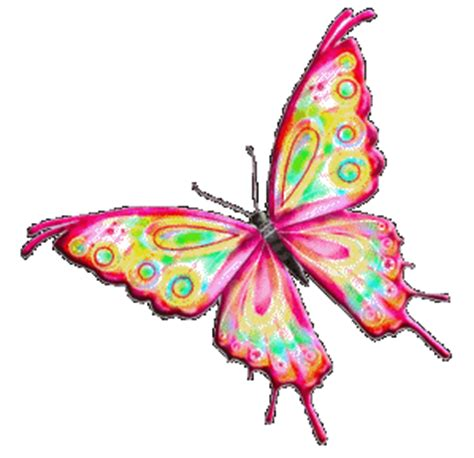 beautiful butterfly animated gif images   animations