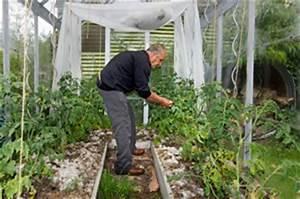 Tomatenhaus Holz Bausatz : tomatenhaus selber bauen bauanleitung ~ Whattoseeinmadrid.com Haus und Dekorationen