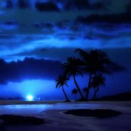 Tropical Beaches at Night