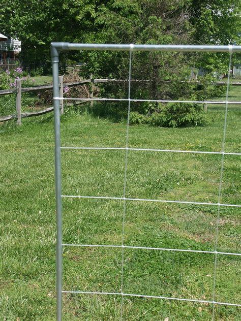 Trellis Netting by Garden Netting Images