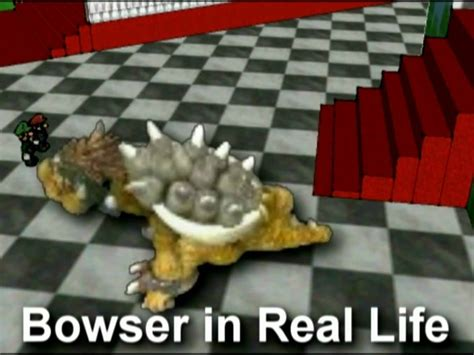 Spore Bowser In Real Life Youtube