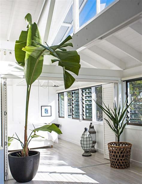Speriamo che questa selezione, adatta a spazi e case di qualsiasi dimensioni, vi sia di aiuto per trovare la vostra soluzione. Pendenti Piante Verdi Da Interno : Photos piante da ...