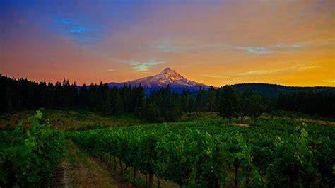 wallpaper mountains  hd wallpaper  field sunset