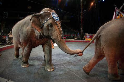 ringling bros circus  close   years