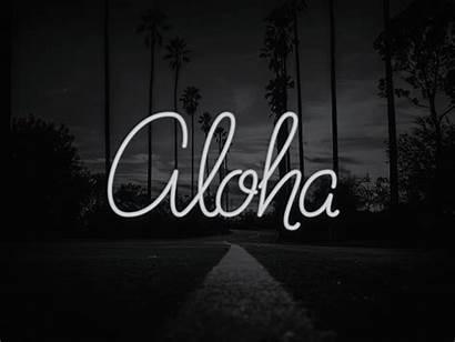 Aloha Neon Dribbble Viray Lettering Lights