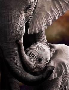 En Pinterest: Las imágenes más conmovedoras de madres e ...