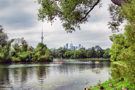 10 Fun Things To Do On The Toronto Islands This Summer