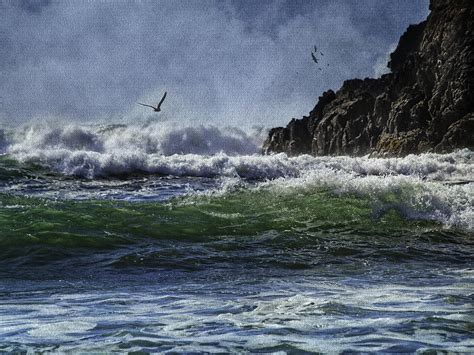 whales head beach southern oregon coast photograph by