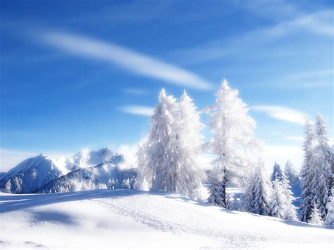 Snowy Landscape Wallpaper  Bing Images