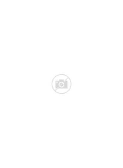 Squirrel Mtg Token Berserker Argyle Steve Cardamajigs