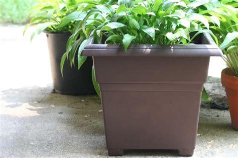 vasi da giardino in plastica vasi giardino plastica vasi da giardino tipologie di