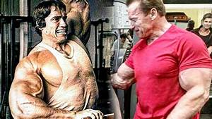 Arnold Schwarzenegger Gym Training In 2019 - Still Working Out Strong At 71 Years Old