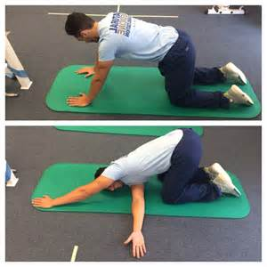 Thoracic Spine Yoga Stretches