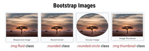 bootstrap images  examples tutorialstonight