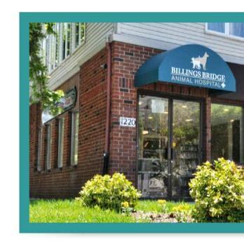 ottawa animal hospital billings bridge animal hospital veterinarians 1220
