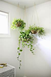 indoor hanging planters Indoor Garden Idea - Hang Your Plants From The Ceiling ...