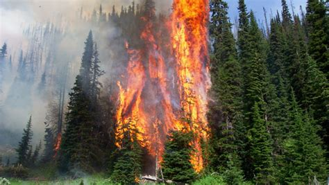 year fire anniversary offers important safety reminder