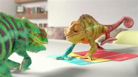 chameleons changing colors animal myths the of teresa