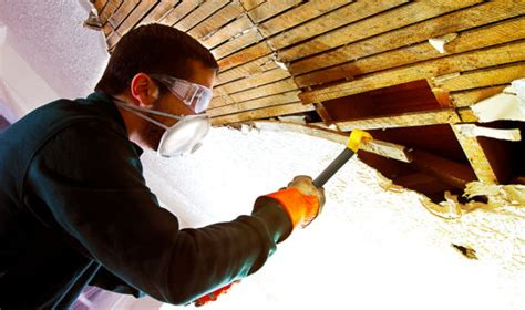 asbestos removal cost discover