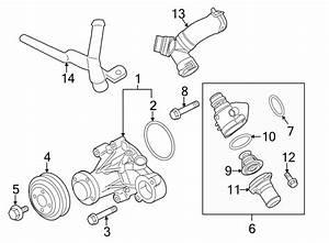 Ford F150 Water Pump Diagram