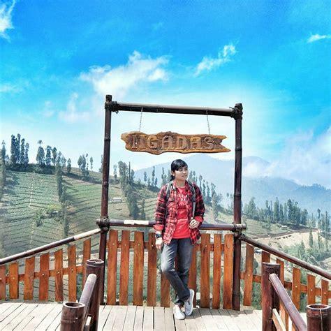 lokasi  jalan menuju desa ngadas malang desa tertinggi