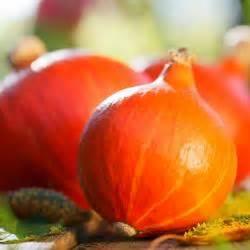 Hokkaido Kürbis Ernten : aubergine pflanzen pflegen und ernten mein sch ner garten ~ Orissabook.com Haus und Dekorationen