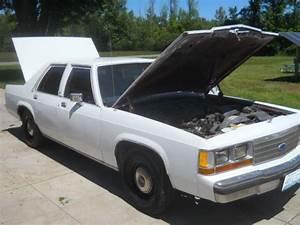 1990 Ford Ltd Crown Victoria  U0026 39 P72 U0026 39  Police Interceptor 302
