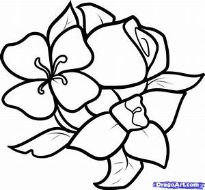 How to Draw Easy Flowers, Step by Step, Flowers, Pop ...
